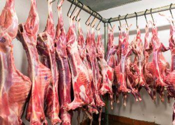 halal-lamb-meat